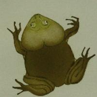Brugets frog