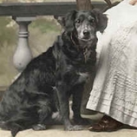 12 - Portrait of woman and dog