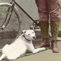 13 - Man standing next to bike with dog at his feet