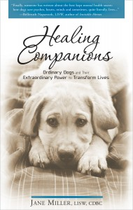 Healing Companions cover