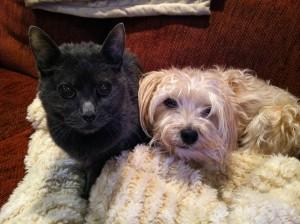 juliet with her best buddy eldie