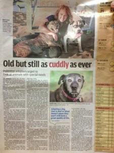 photo of Malaysian article