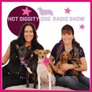 HOT_DIGGITY_RADIO_HS_copy_2013-08-540x540