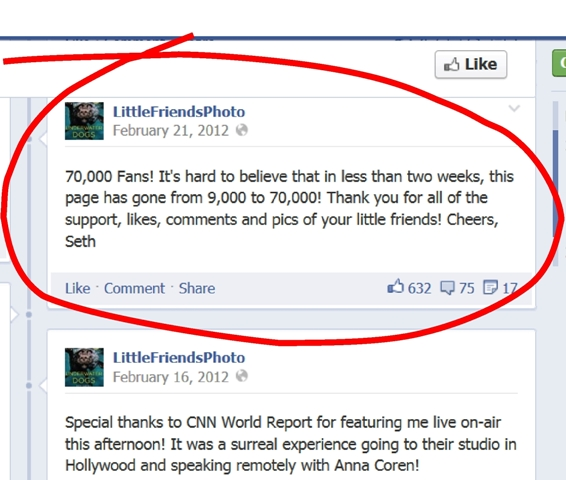 LittleFriends FB page - circled closeup - med